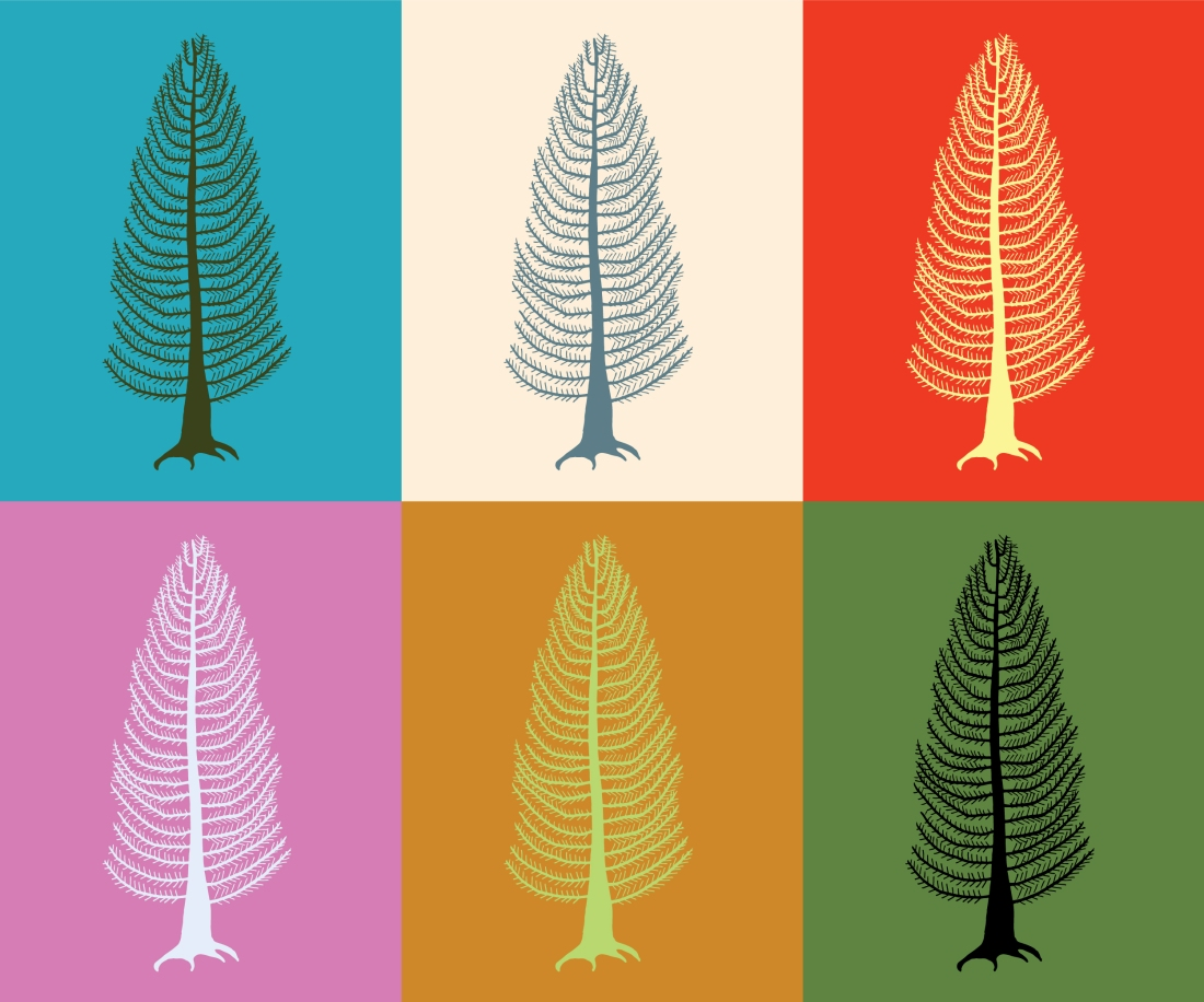 Custom Colour Cedar Tree Illustration - Digital Art Download - Wall Prints by Brina Schenk at Annex Collections