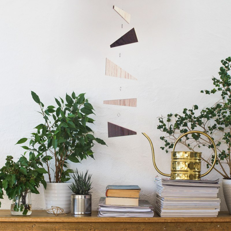 Annex Suspended Art - Empire Eye, natural geometric wood hanging