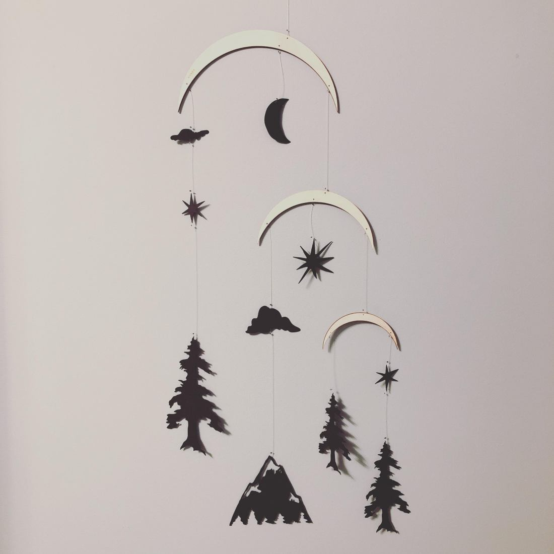 Rocky Mountain Christmas Cast.Rocky Mountains In Black Restock Annex Suspended Art